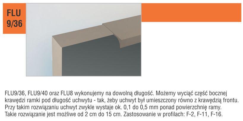 FLU9_36_details2